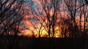 Kansas Home View
