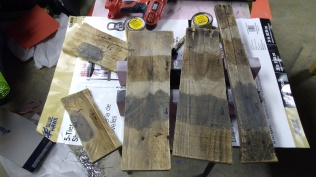 Stain Experiments